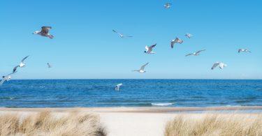 Meeresstrand und Gesundheit
