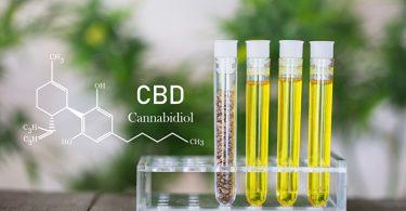 CBD entzündungshemmende und beruhigende Wirkungen