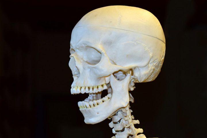 Für die Kraniosakraltherapie wird der Schädel ganz genau abgetastet.